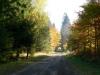 Vranovský les
